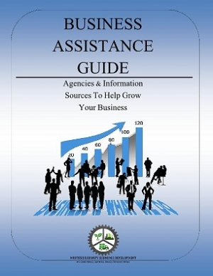 Business Assistance Guide/Virtual Incubator